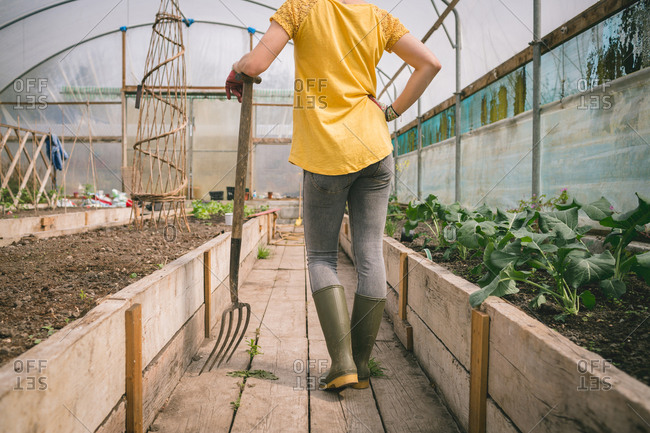 Low section of Woman with digging fork standing in greenhouse