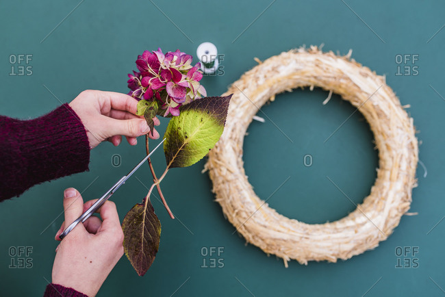 Woman, detail, hands, autumn, wreath with hydrangea blossoms, DIY,