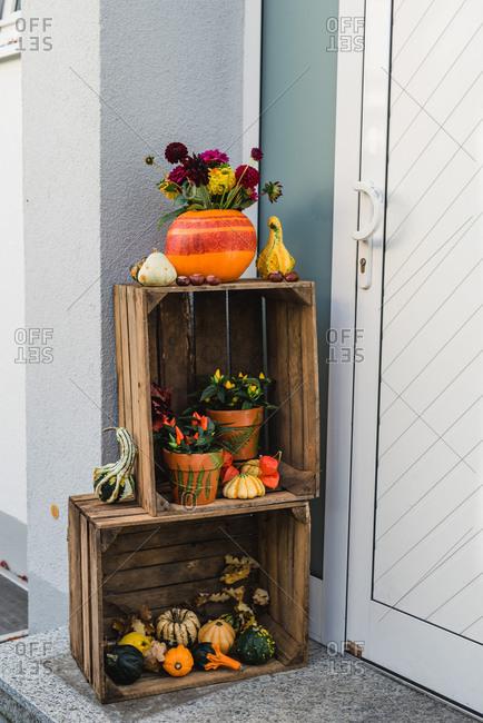 Entrance, wooden boxes, autumnal decoration, pumpkins, flowers,