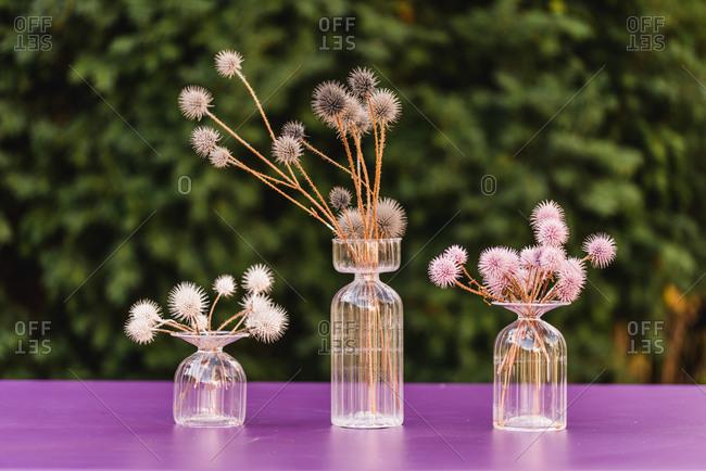 Table decoration, glass vases, globe thistles, coloured,