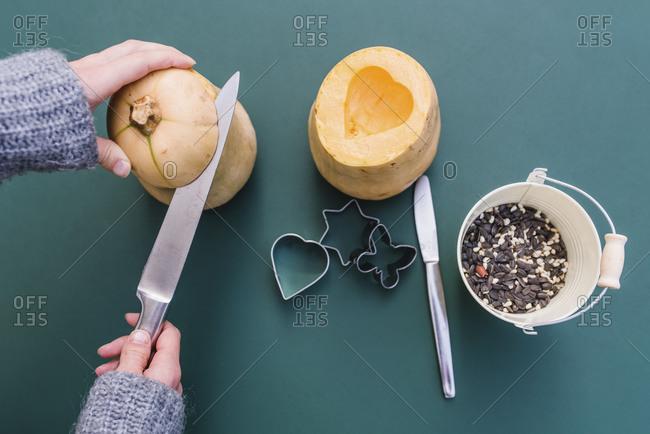 Woman, detail, hands, pumpkin, birdseed, bird seed, bird food, bird food, bird feed,