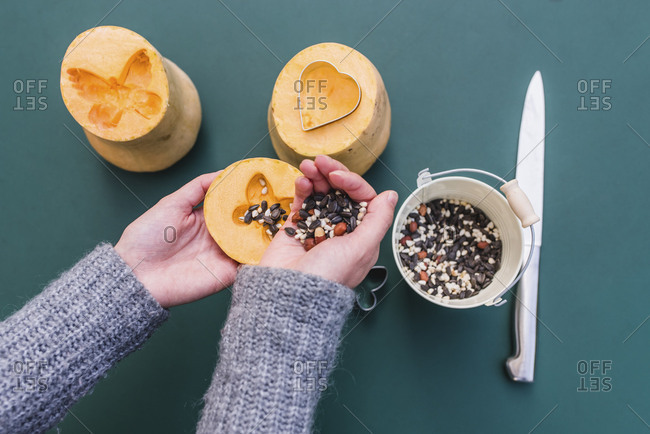 Woman, detail, hands, pumpkin, birdseed, bird seed, bird food, bird food, bird feed,