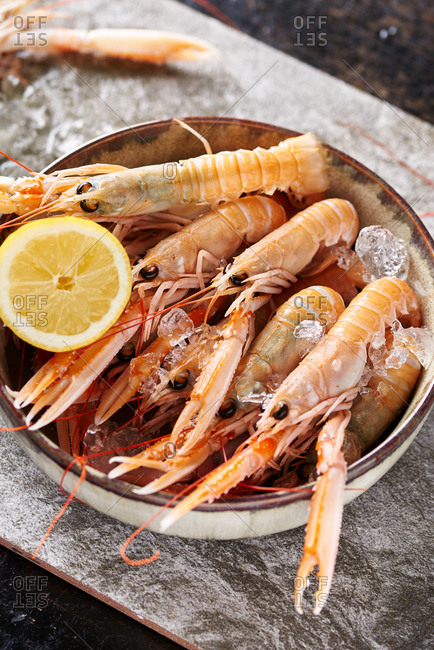 Fresh seafood from the Offset Collection