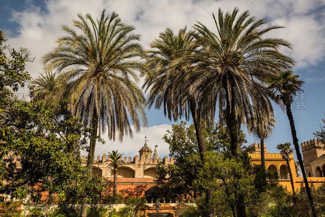 Europe, Spain, Andalusia, Seville, Real Alcazar, garden, royal garden, palm trees, garden architecture,