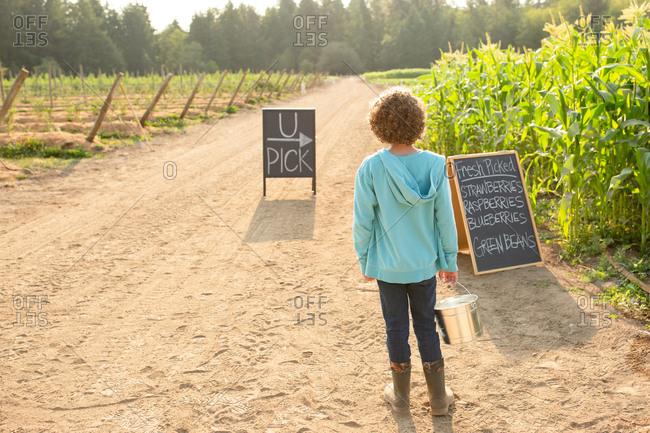 Rear view of boy standing by sings on a U-pick farm