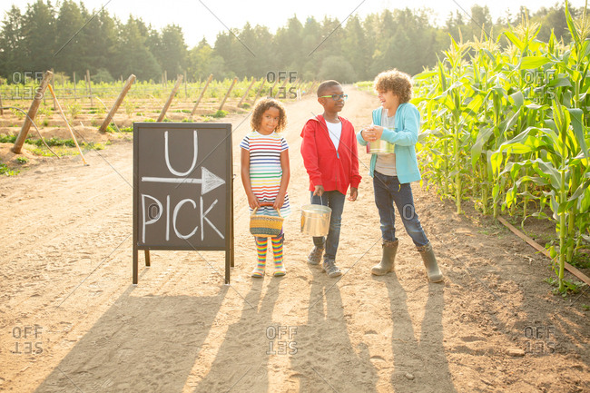 Three siblings standing by sign on a U-pick farm