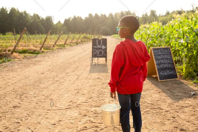 Rear view of little boy holding bucket by U-pick sign on a farm