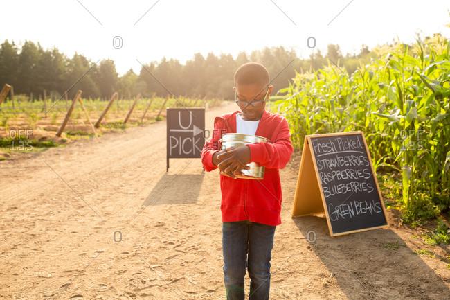 Little boy holding bucket by signs on a U-pick farm