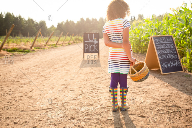 Rear view of little girl standing by chalkboard sign at a U-pick farm