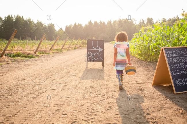 Rear view of girl walking by chalkboard sign at a U-pick farm