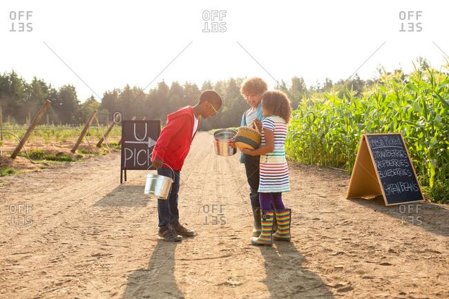 Siblings showing each other inside of buckets on a U-pick farm