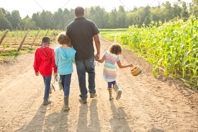 Father and three children on a U-pick farm from behind