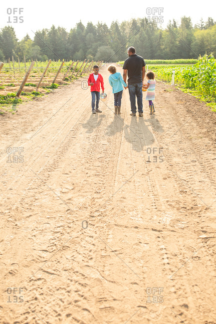 Dad and three children walking on a U-pick farm from behind
