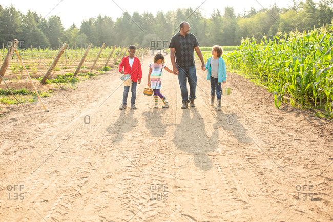 Dad and his children walking on a U-pick farm