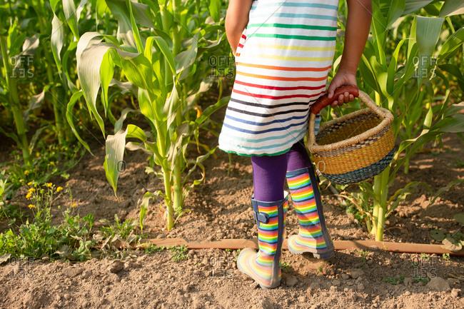 Little girl in rainbow outfit on a farm