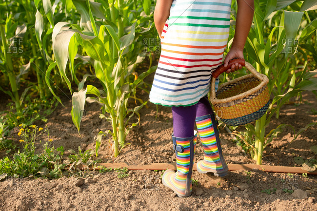 Little girl in rainbow outfit on a farm