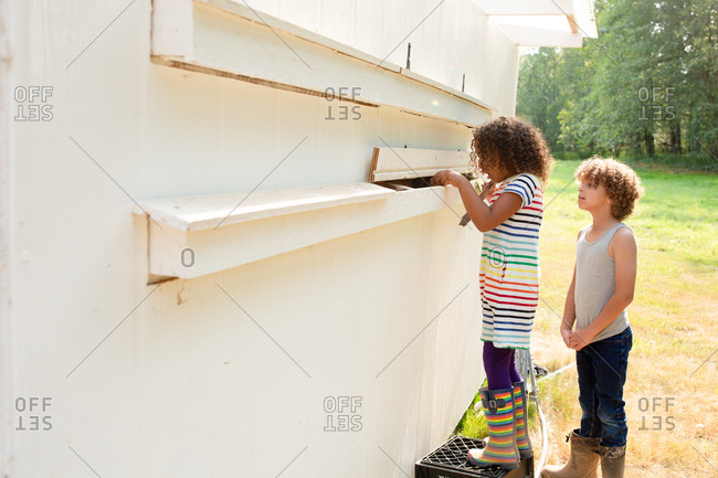 Kids looking into chicken coop for eggs on a farm