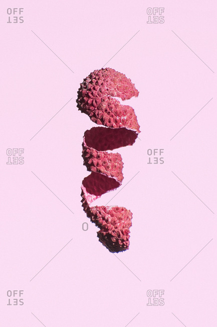 A lychee skin dangles in a spiral on a pink background