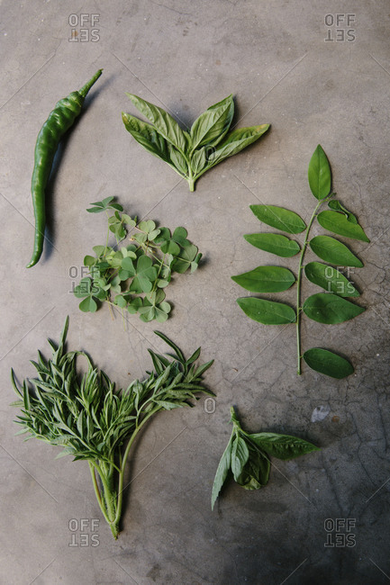 Fresh herbs used as ingredients in Malaysian cuisine