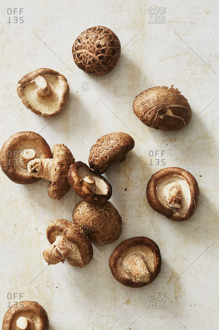 Shiitake mushrooms on counter