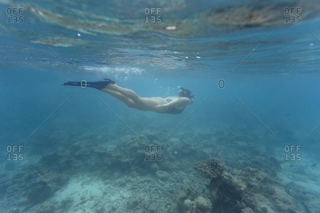 Woman wearing bikini while swimming undersea