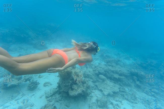 Woman wearing bikini while swimming undersea at Maldives