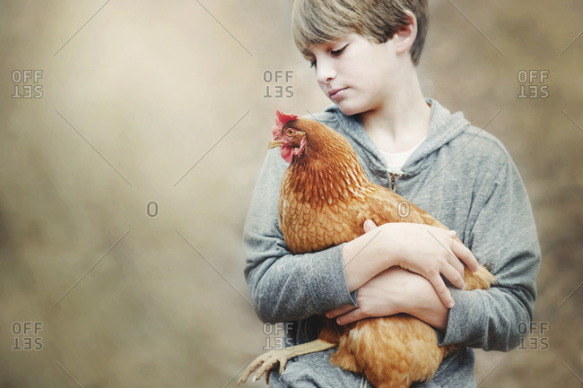 Close-up of boy holding chicken while standing outdoors