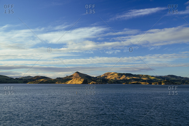 View of Otago harbor, Dunedin, New Zealand
