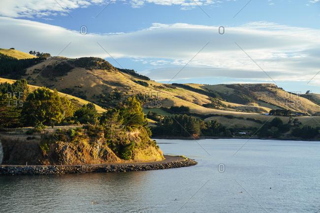 View of Otago harbor at sunrise, Dunedin, New Zealand