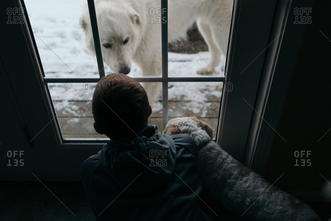 Rear view of boy with dog looking out window at another dog