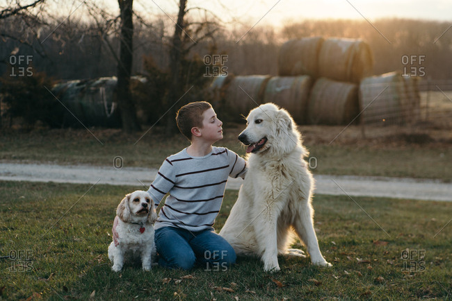 Boy sitting outside with two dogs at sunset