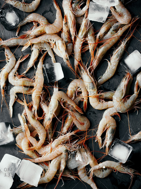 Shrimps and ice cubes on a black stone surface