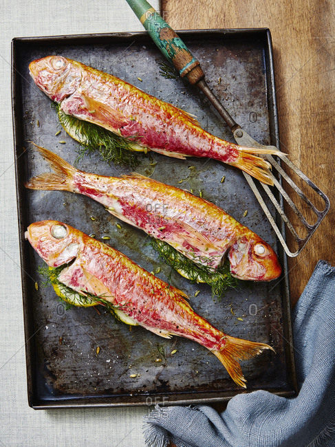 Tray Baked Red Mullet with Lemon and Dill
