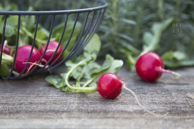 Radishes in a wire basket and next to it