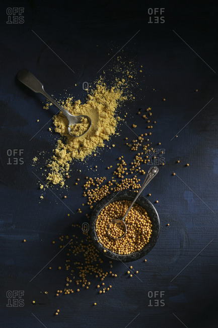 Mustard seeds and mustard powder on a dark background (top view)