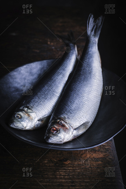 Herring on a plate