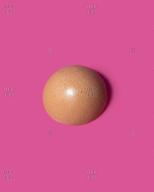 A brown eggshell in a circle on a pink background