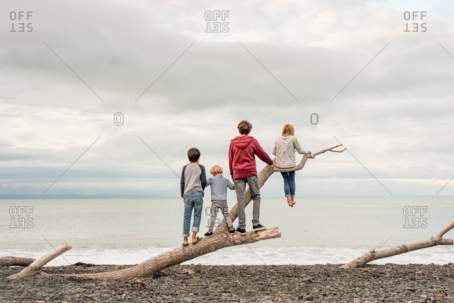 Children standing on drift wood on a beach together in New Zealand