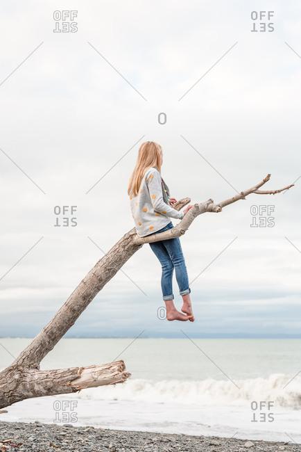 Little girl sitting on driftwood by ocean