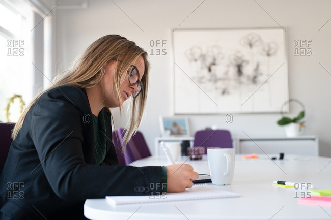 Young businesswoman taking notes in an office