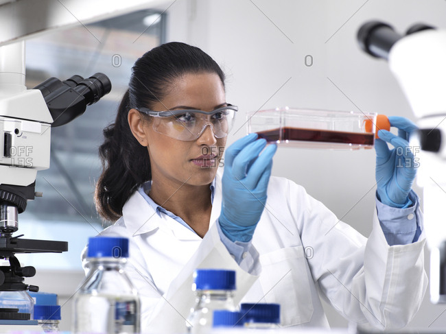 Biomedical Research- female scientist viewing stem cells developing in a culture jar during an experiment in the laboratory