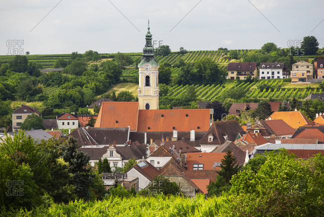 Austria- Lower Austria- Waldviertel- Wachau- Langenlois- Parish Church- vineyard