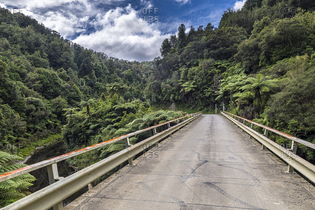 New Zealand- North Island- Taranaki- Forgotten World Highway