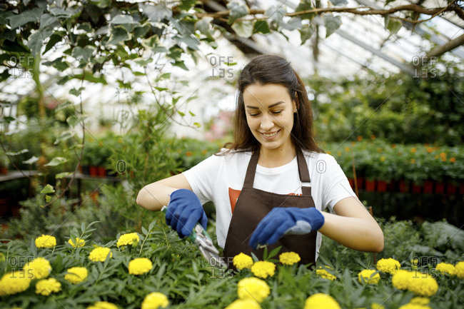 Young woman using garden clippers