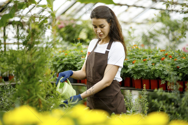 Woman watering plants in a greenhouse