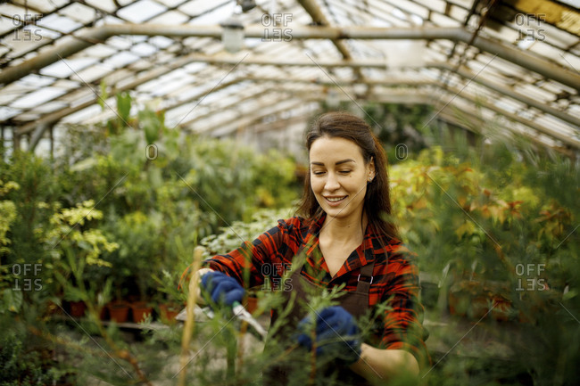 Smiling woman gardening in a greenhouse