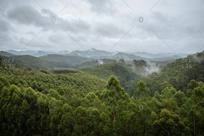 Scenic view of trees and clouds in the subtropical rainforest surrounding Domingos Martins, Brazil