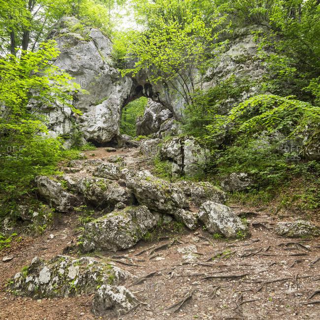 Europe, Poland, Silesia, Krakow-Czestochowa Upland / Polish Jurassic Highland, Twardowski Gate