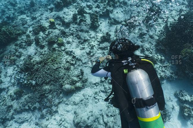 Scuba diver in Tubbataha Reef, Cagayancillo, Philippines