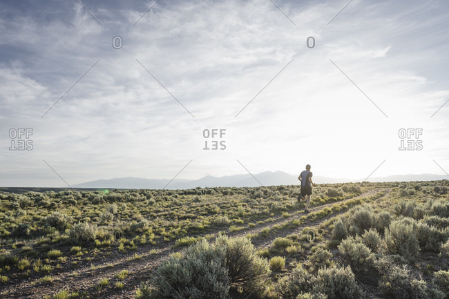 Man trail running through sagebrush desert, Taos, New Mexico, USA